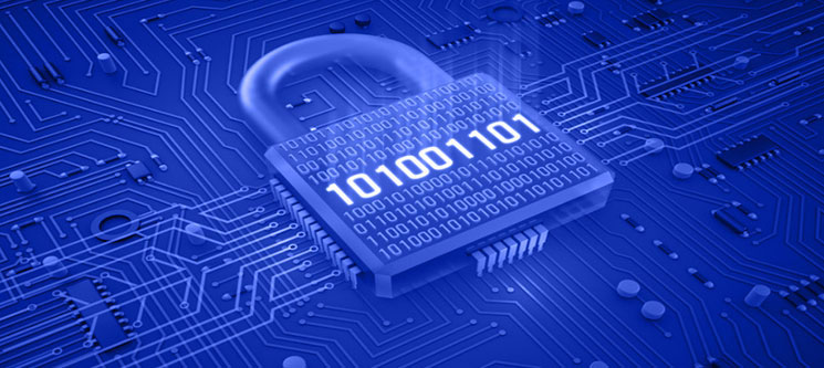 firewall-management-services